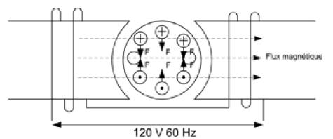 Moteur Asynchrone Monophase Condensateur De Demarrage Ou Permanent